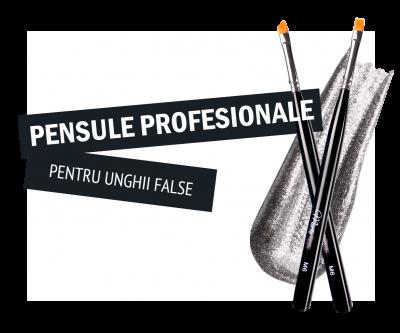 pensule_categorie